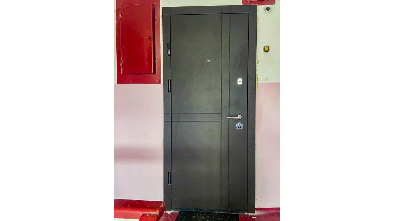 Входная дверь под интерьер