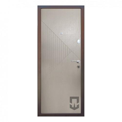 Входные двери Terra 1 LS_Kale в квартиру